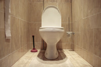 9 things you shouldn't flush down your toilet